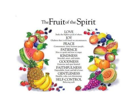 9 fruitssss.jpg