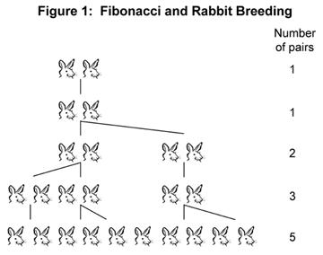 rabbit-family-tree